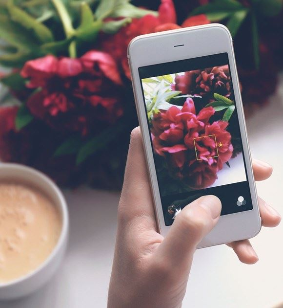 Photo being taken of flowers for Instagram
